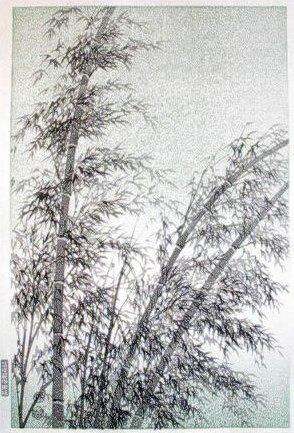 Bambus by Eiichi Kotozuku