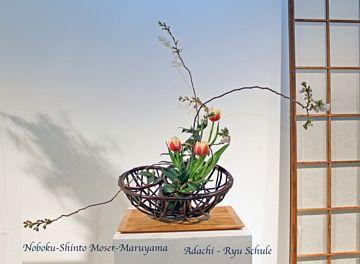 Giardina 2010 Noboku-Moser