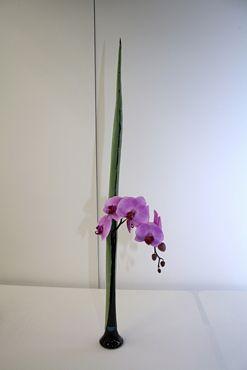 Ikebana Orchideenausstellung Bern 2011