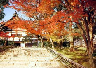 der zen garten des ryoanji tempels in kyoto roman daniela jost m bel im traditionellen. Black Bedroom Furniture Sets. Home Design Ideas