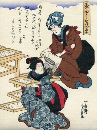 Yoshikazu Utagawa Sericulture
