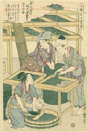 Utamaro Kitagawa Joshoku Kaiko Tewaza Kusa Bild03