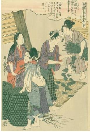 Utamaro Kitagawa Joshoku Kaiko Tewaza Kusa Bild05