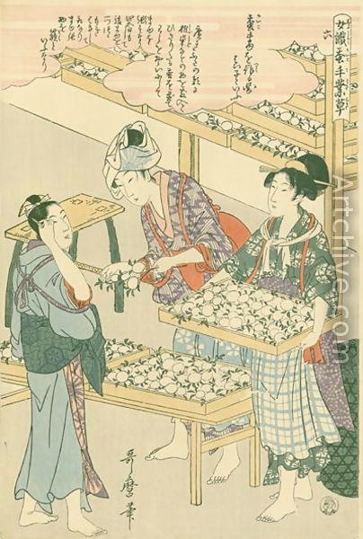 Utamaro Kitagawa Joshoku Kaiko Tewaza Kusa Bild06